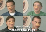 ad_pigs.jpg