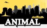animal_banner_new.jpg