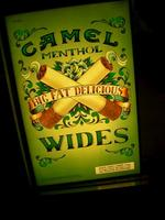 camel_wides.jpg