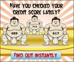 credit_score_sumo.png