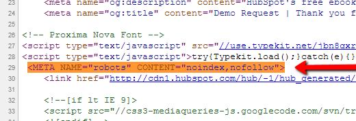 meta_tag_in_header.png