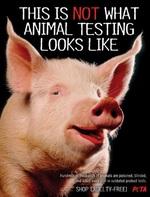 peta-animal-testing.jpg
