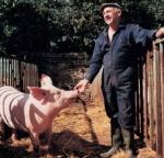 pig-and-farmer.jpg
