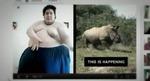 rhino_hijack_videos.jpg