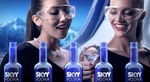 skyy_vodka_babes.jpg
