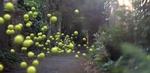 sony_balls_tennis.jpg
