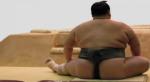 sumo-wrestler.jpg