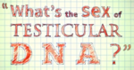 testicular_dna.png