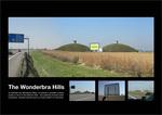 wonderbra_hills.jpg